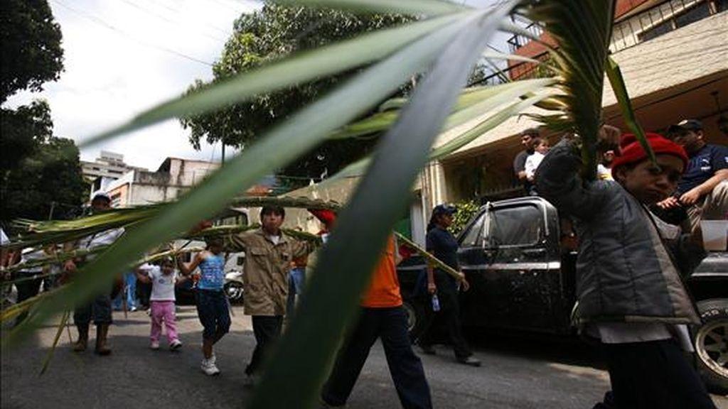 Palmeros descienden hoy desde el municipio de Chacao (Venezuela), situado al pie de la montaña del Ávila, hasta Caracas, con las palmas que serán repartidas a los feligreses el Domingo de Ramos, como llevan haciendo generación tras generación desde 1770. EFE