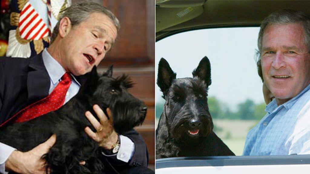El perro de George W. Bush atacó a un periodista