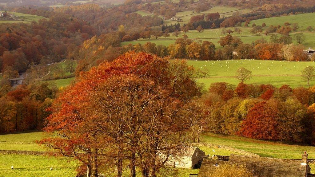 El otoño británico
