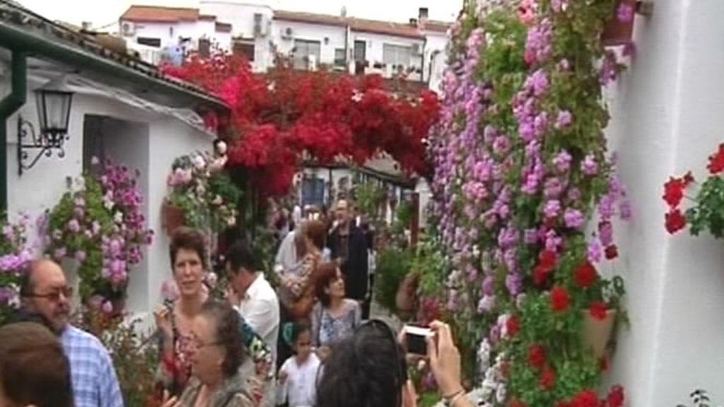 Turistas y curiosos acuden a la Feria de los Patios en Córdoba
