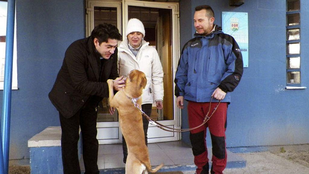 Teresa Romero adopta un perro