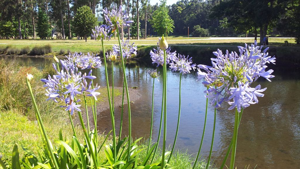 El 'punto d' de Noelia Vivancos es el relajante río Lérez de Pontevedra