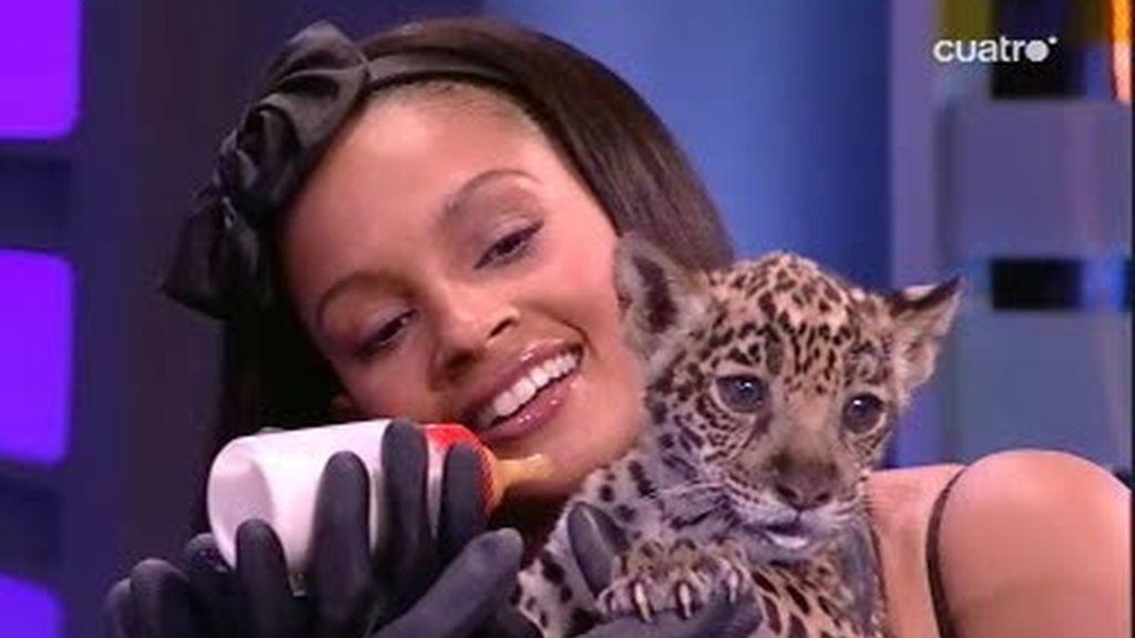 Alesha Dixon da el biberón a un jaguar bebé