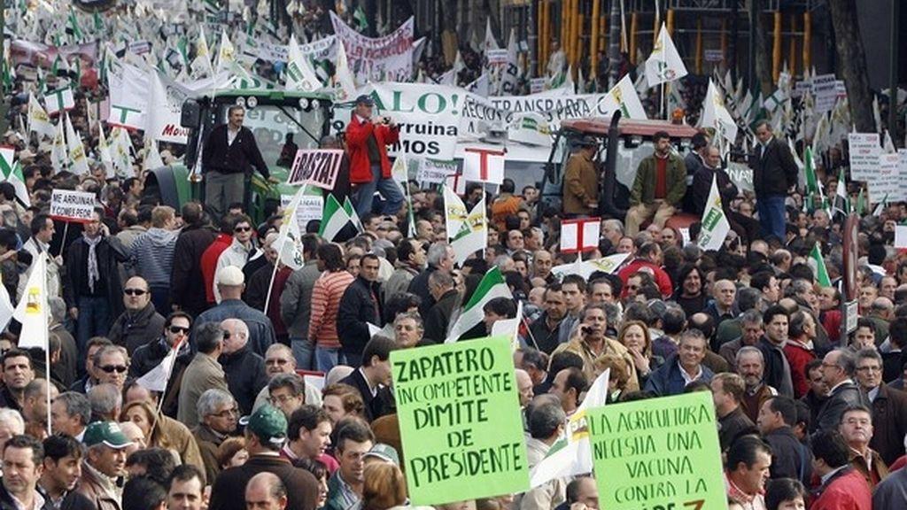 Miles de agricultores se manifiestan en Madrid por la crisis del campo