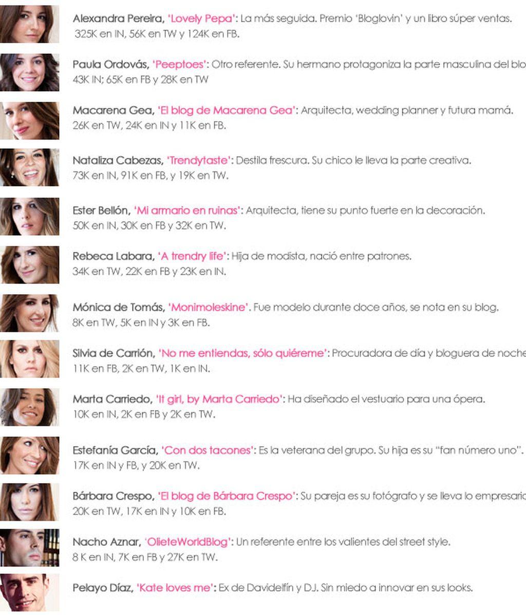 descripciones wloggers2