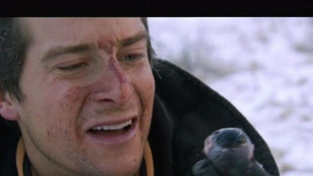 Siberia: El último superviviente se come un ojo crudo de yak
