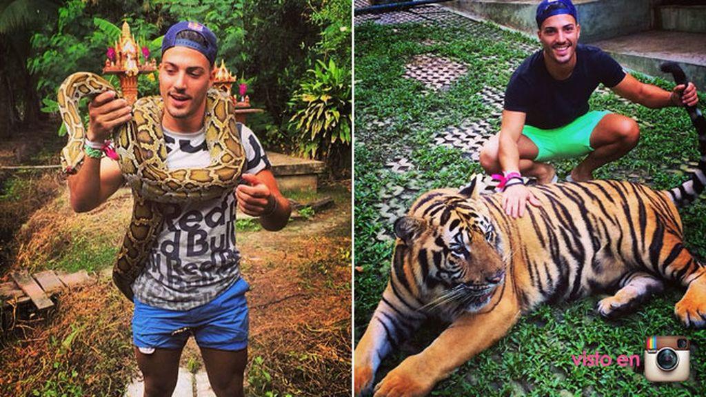 Eric es un gran amante de los animales y su favorito es el tigre