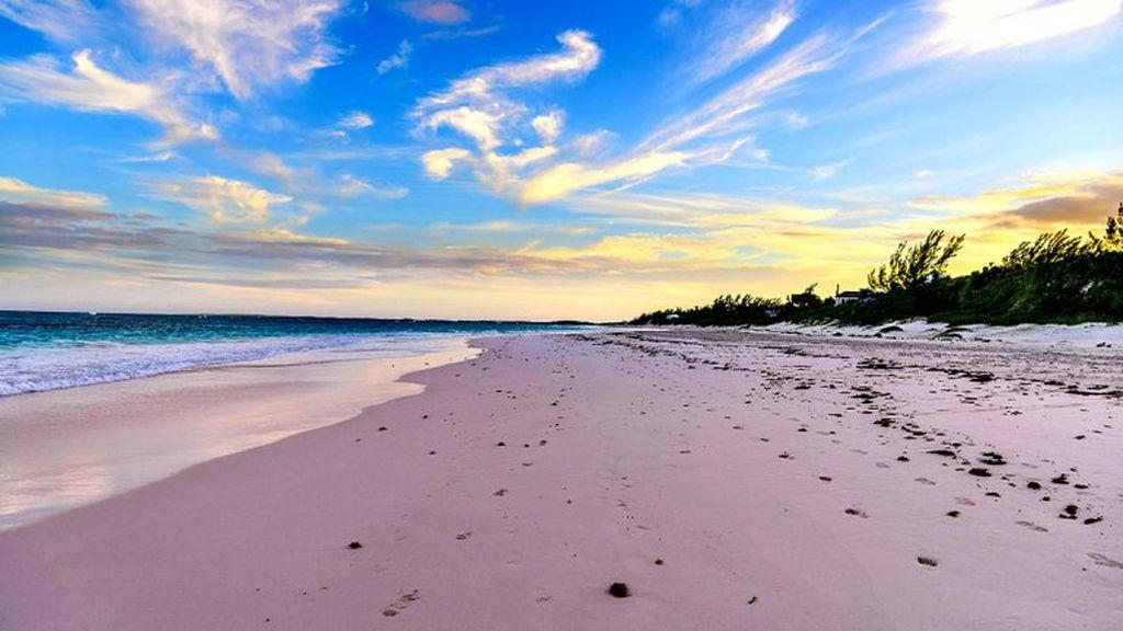Playa de Pink Sand, Bahamas