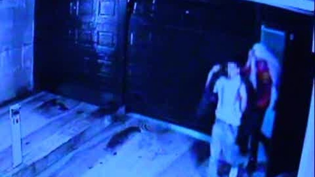 Ladrones de garajes