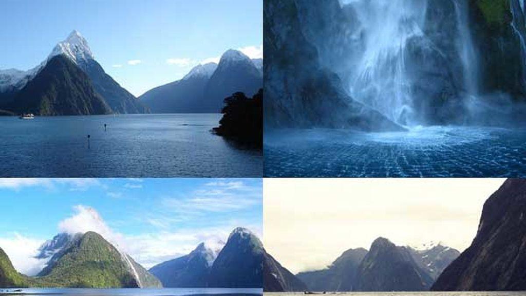 Bosque de Milford Sound: La octava maravilla del mundo