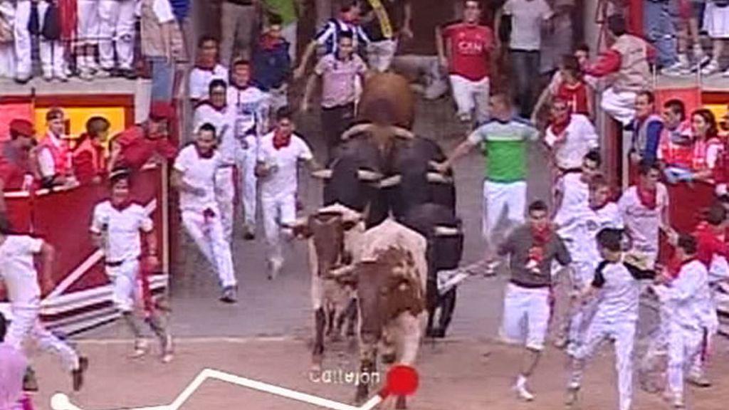Los toros han llegado a la Plaza de toros en un tiempo de 2 minutos y 30 segundos