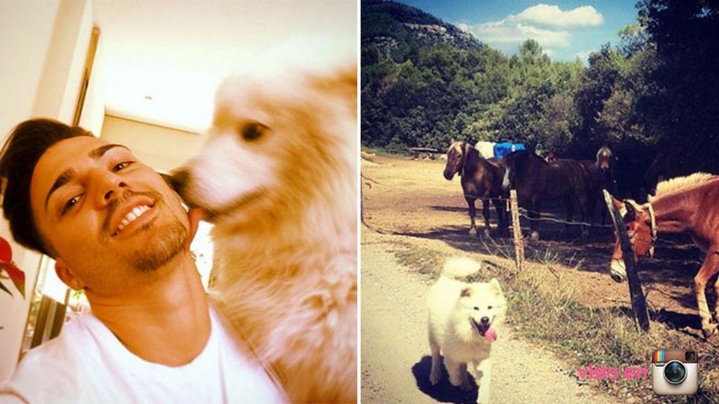Aunque su ojito derecho es su perro, un peludo Samoyedo
