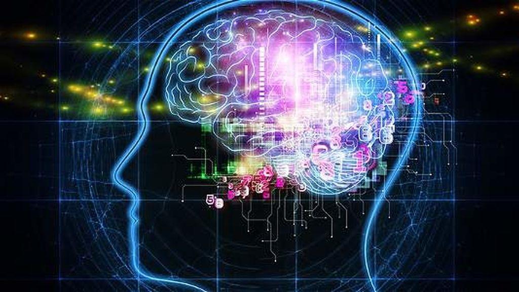 IBM,chip,cerebro,computación neurosináptica,