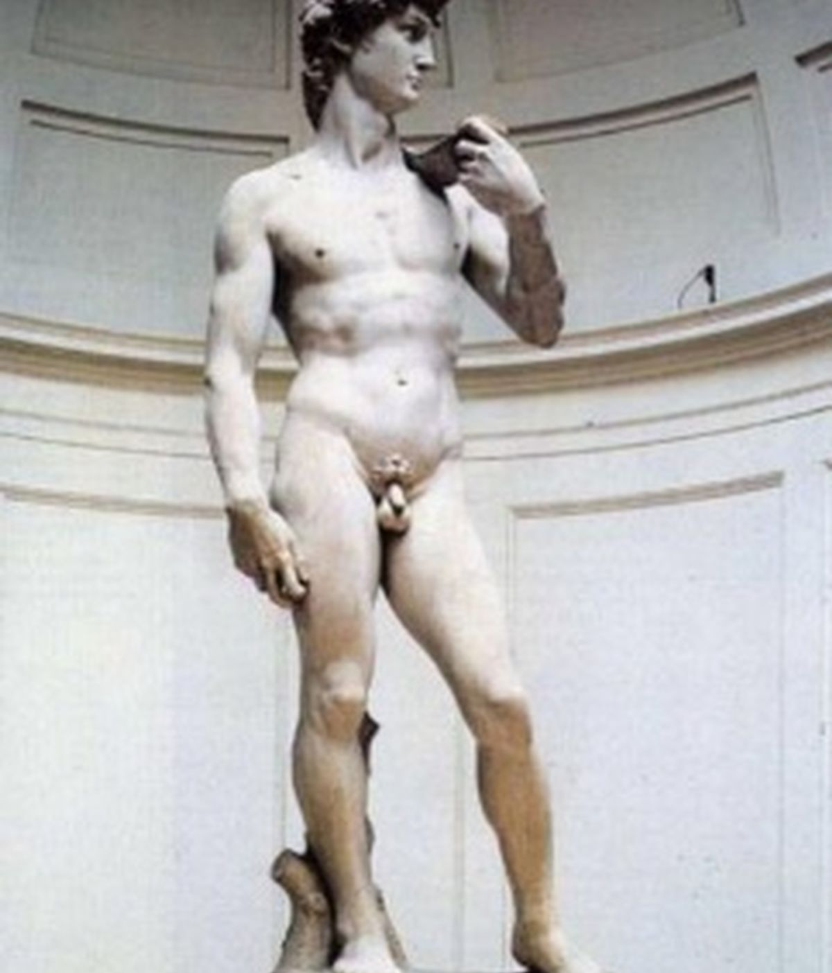David, escultura, David de Miguel Angel