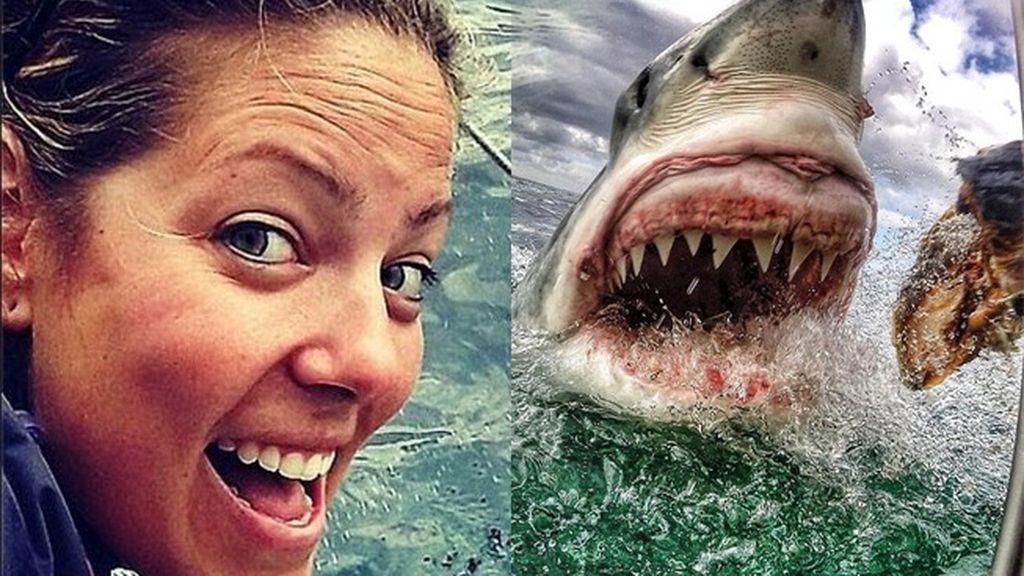 Una maestra captura una sorprendente foto de un tiburón blanco