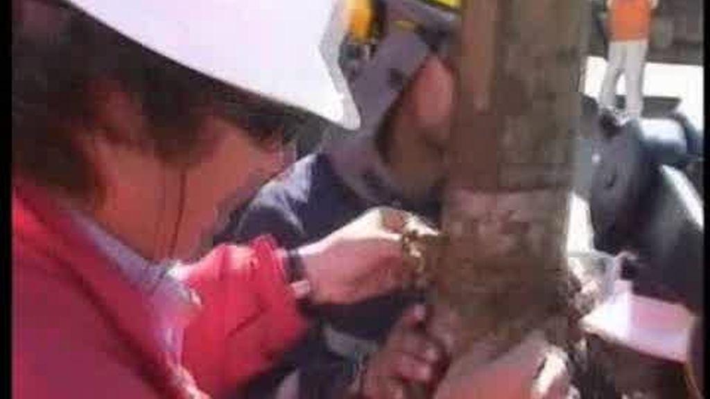 Los mineros de Chile podrían ser rescatados en tres o cuatro meses