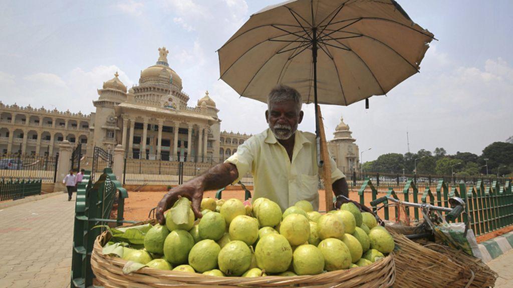 Vida cotidiana en Bangalores