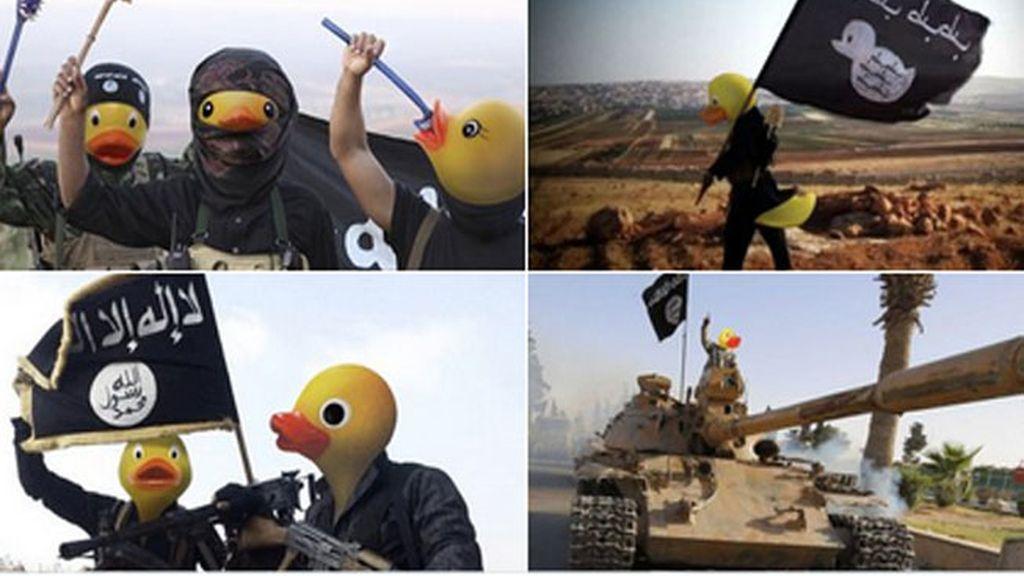 ¿Patos terroristas?