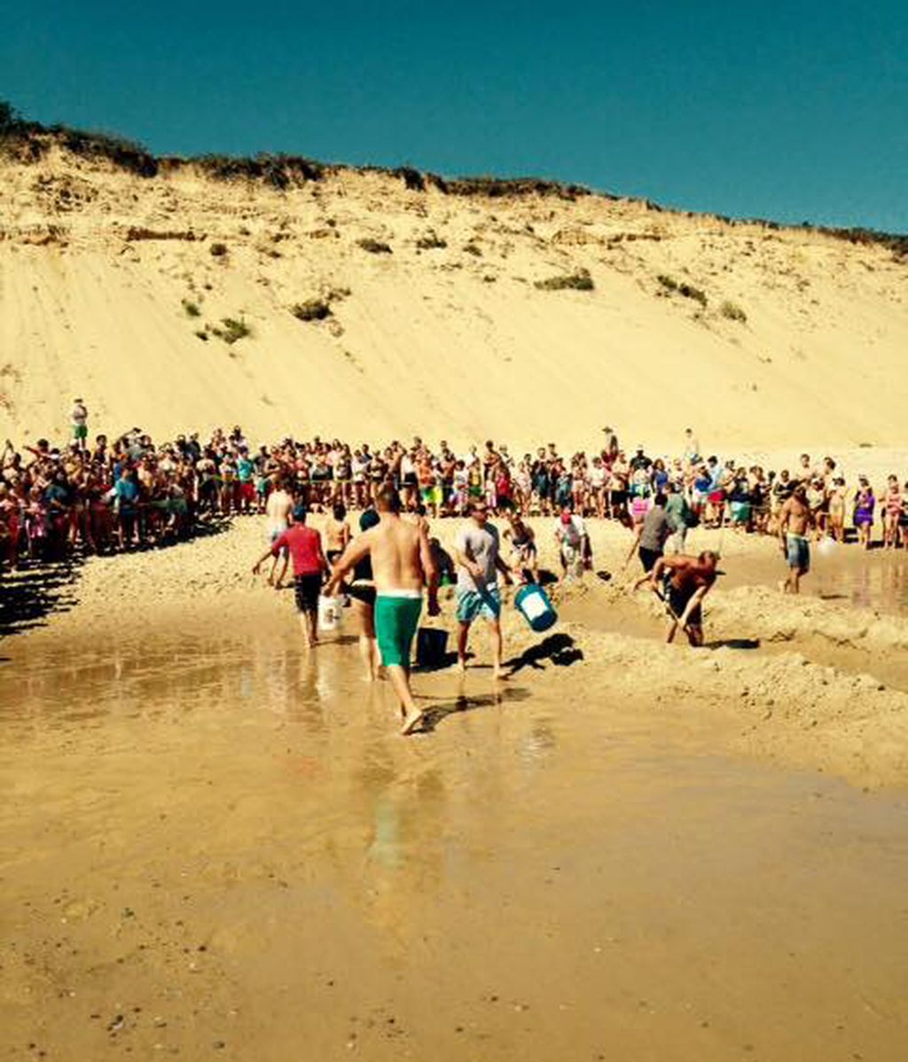 El escualo, de más de tres metros, quedó atrapado en la arena de la playa