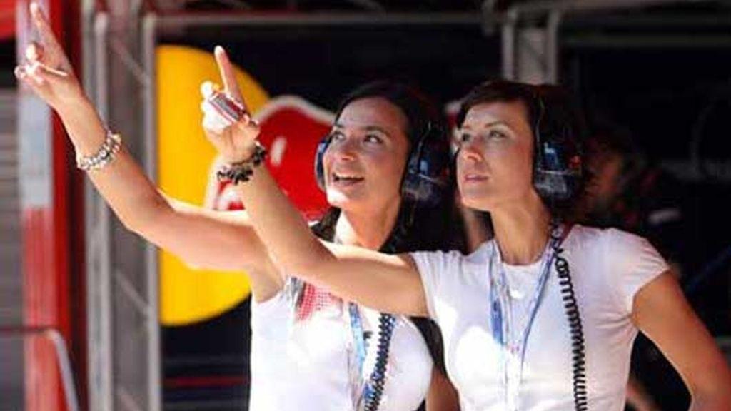 Chicas Fórmula una de Red Bull