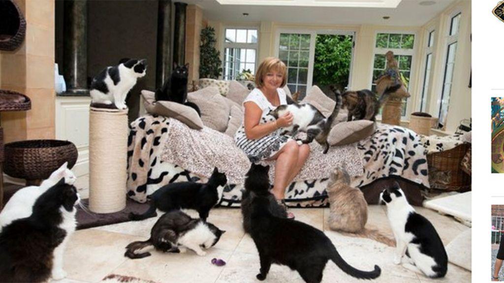 'La mujer de los gatos', convive con 122 felinos