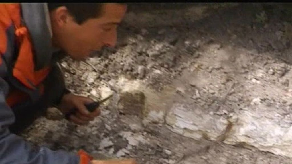 México: ¿Se comerá Bear Grylls un escorpión tigre?