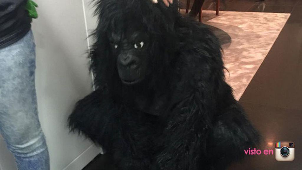 En la que no faltó un gorila, que en realidad era un amigo disfrazado