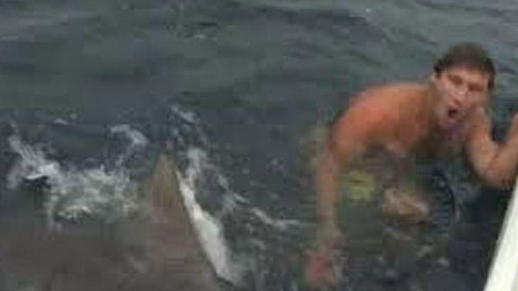 Se salva de milagro del ataque de un tiburón