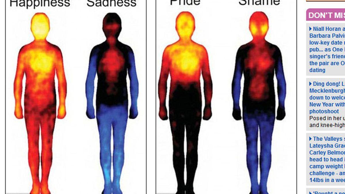 sentimientos,emociones,cuerpo,síntomas,cambios fisiológicos
