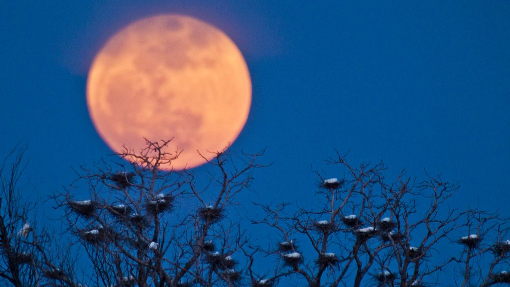 'Superluna' en Wichita
