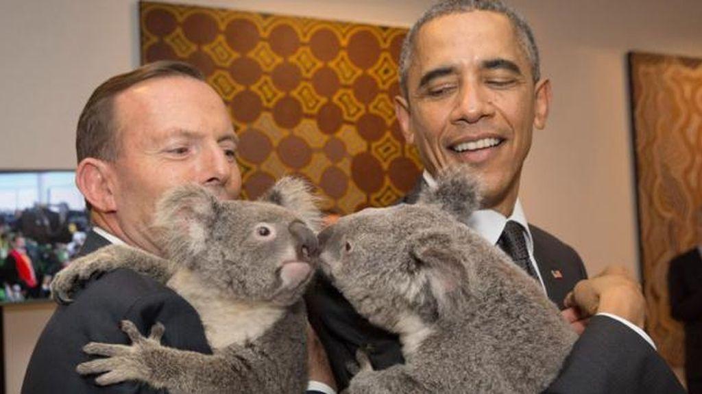 Barack Obama y Tony Abbot, cada uno con un koala en brazos