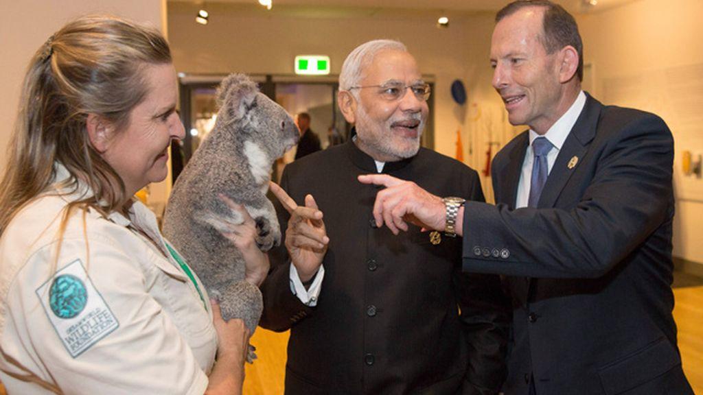 Tony Abott le muestra el koala a Narendra Modi