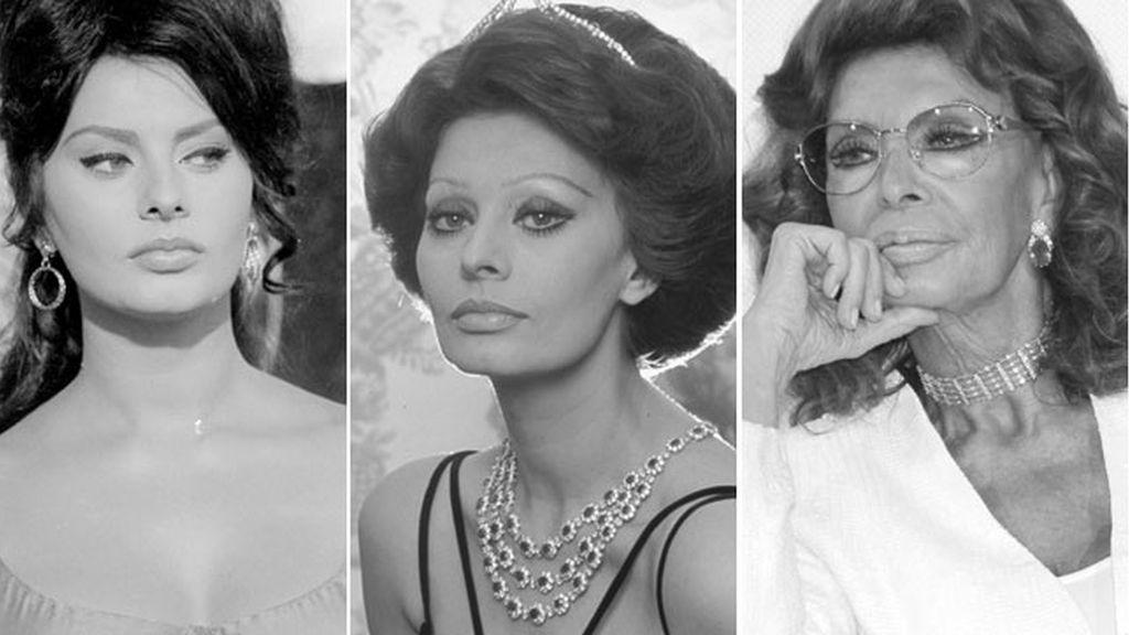 Collage Sophia Loren