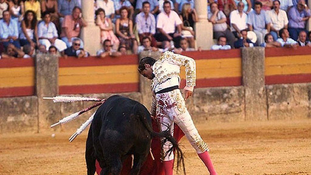 El torero en acción