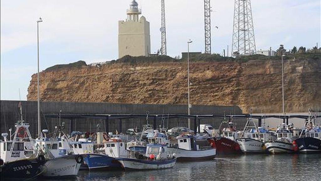 Aspecto que presentaba el puerto de Conil esta tarde, adonde fueron trasladados los cadáveres de los dos tripulantes de una embarcación desaparecida, recuperados por Salvamento Marítimo cerca de esta localidad gaditana. EFE