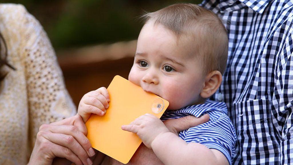 El príncipe George disfruta en el zoo de Sídney