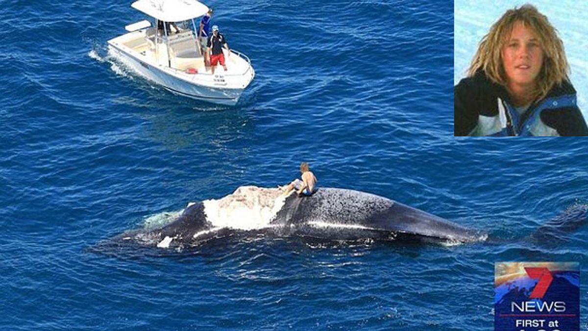 Juega con el cadáver de una ballena y termina rodeado de tiburones
