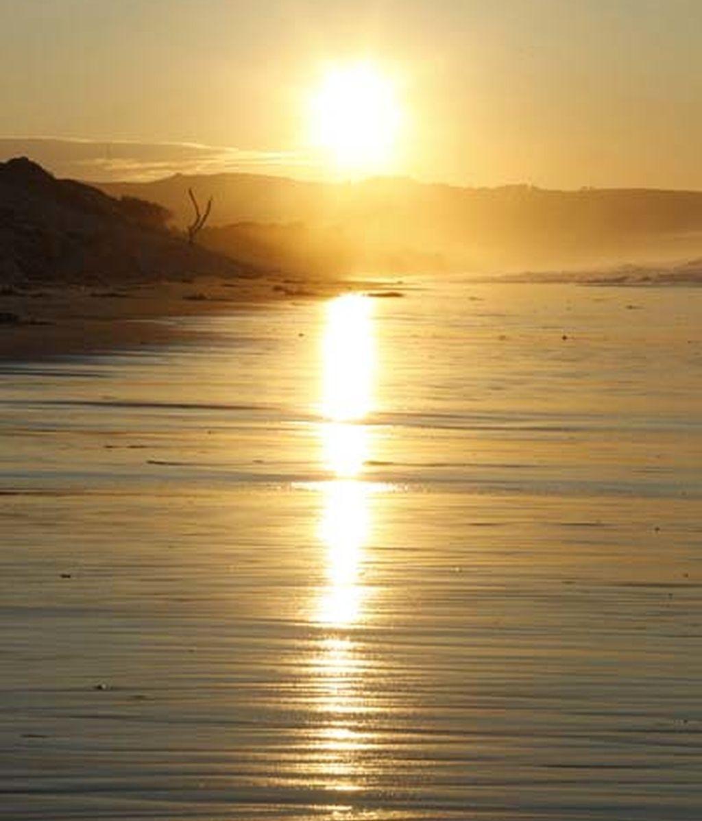 Playa de St Clair, en Dunedin (Nueva Zelanda)