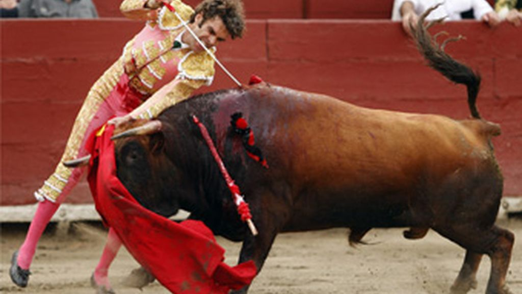 Toros en Cataluña