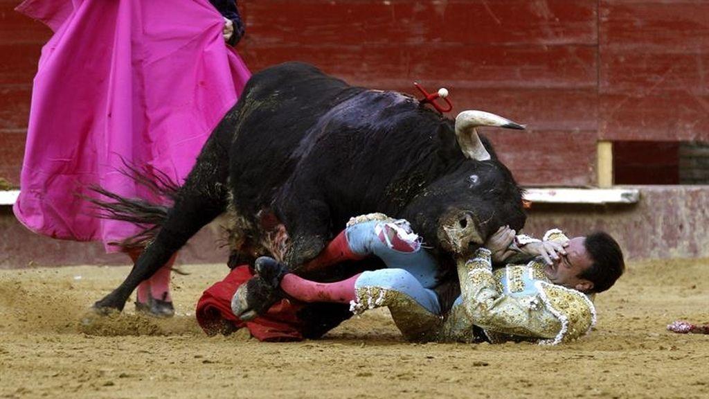 El torero Enrique Ponce corneado y con la clavícula fracturada en Valencia