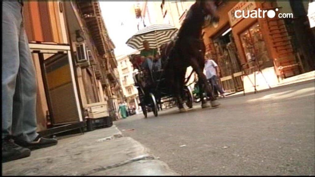 AVANCE. Callejeros Viajeros: Sicilia