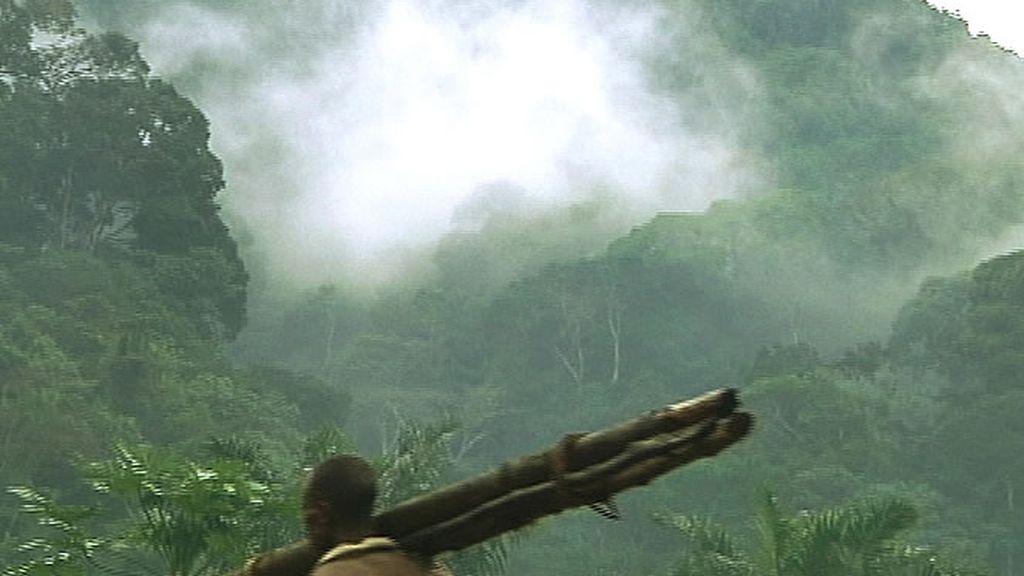 Un hombre transportando madera en la selva congoleña