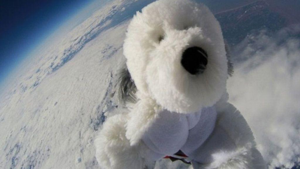 Un perro de peluche en el espacio