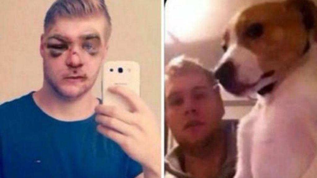 Le dan una paliza tras golpear brutalmente a su perro