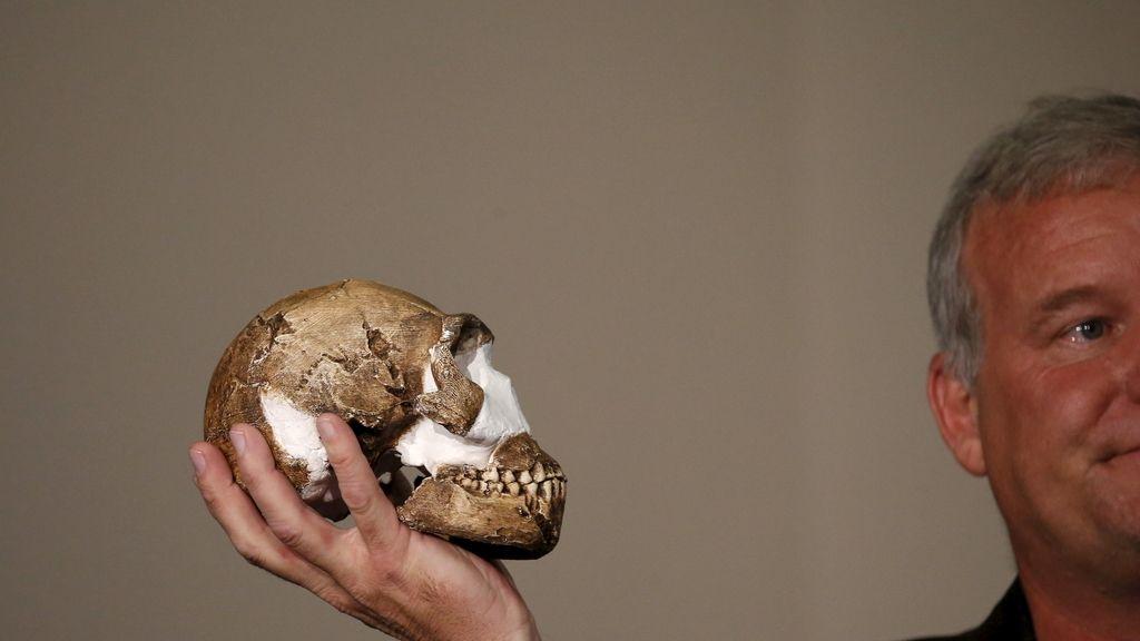 Hallan el esqueleto de una nueva especie humana en Sudáfrica