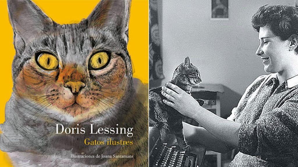 'Gatos ilustres', para amantes de los ronroneos