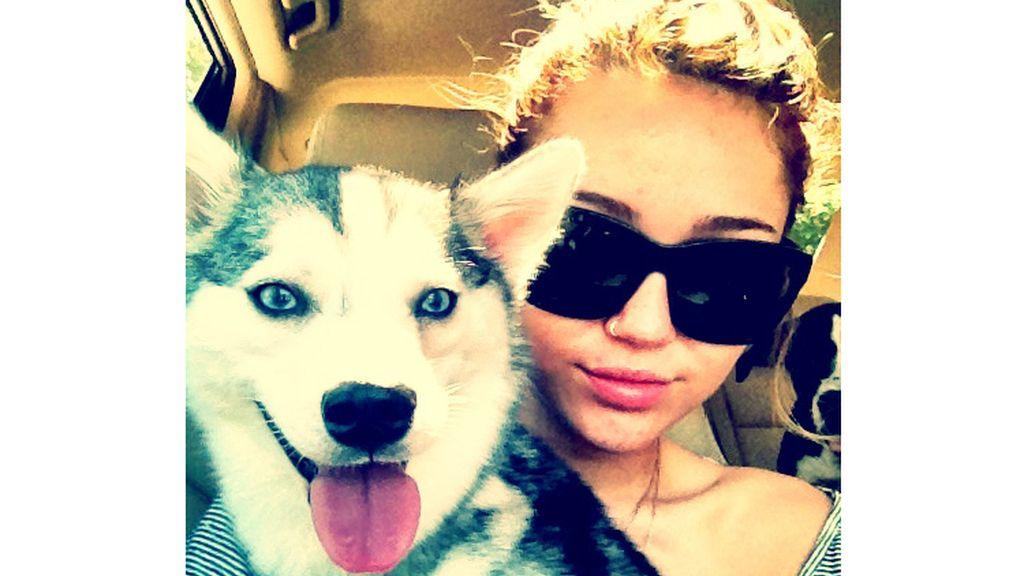 La vena perra de Miley Cyrus