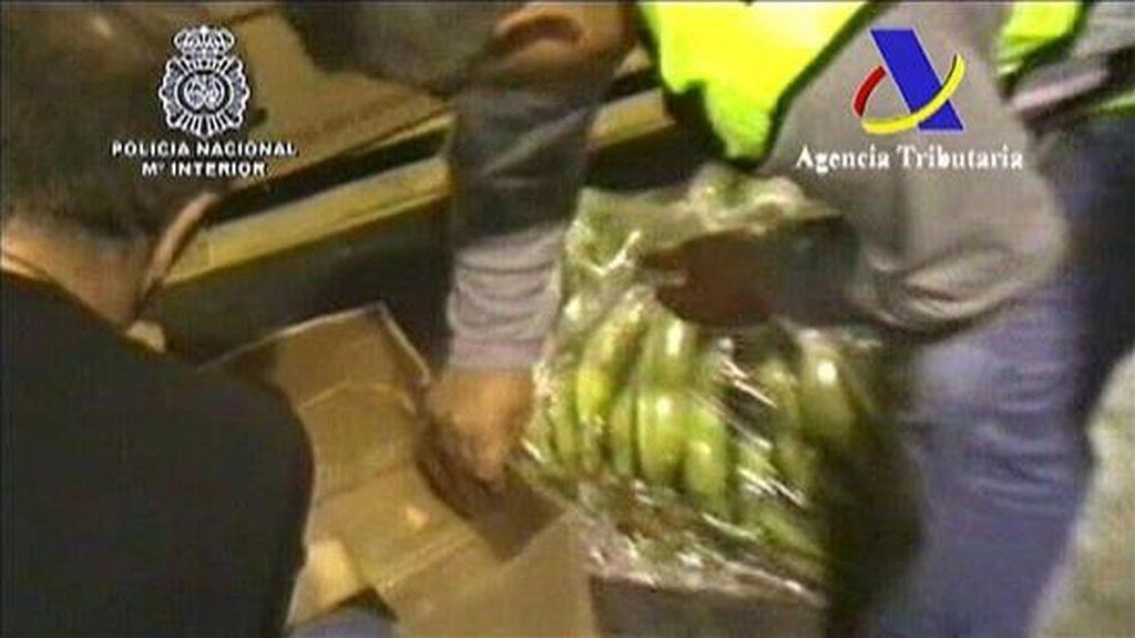 Foto facilitada por el Ministerio del Interior que ha intervenido 645 kilos de cocaína ocultos en contenedores que transportaban plátanos macho procedentes de Ecuador, y ha detenido a ocho personas. EFE
