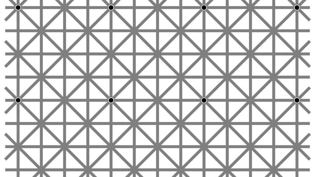 ¿Puedes ver los doce puntos?