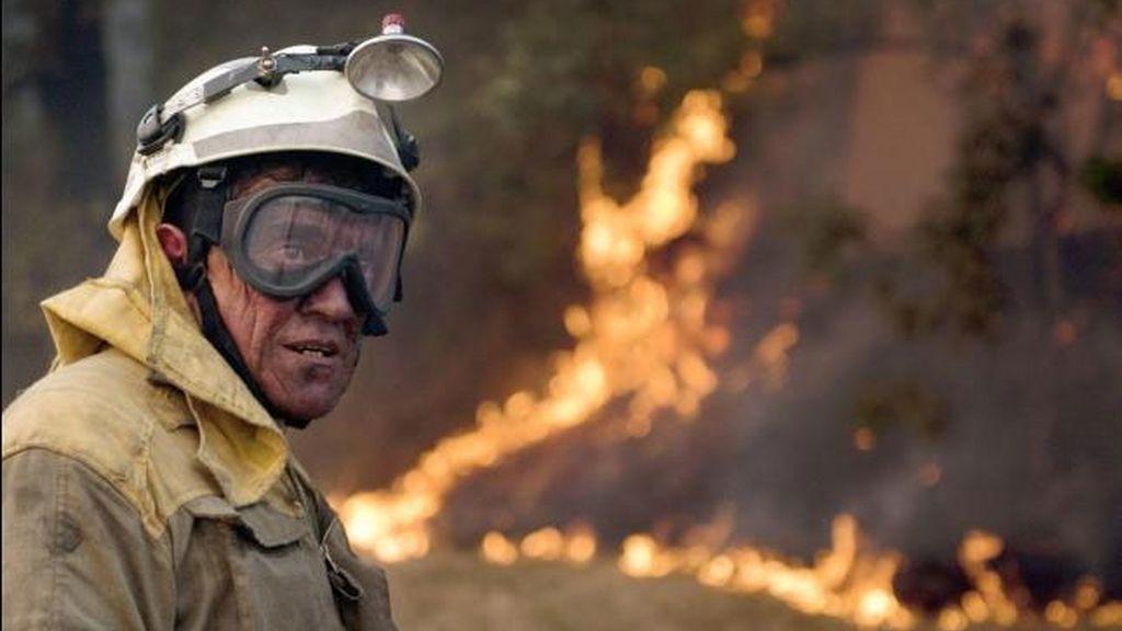 Más de una decena de incendios permanecen activos en Orense.